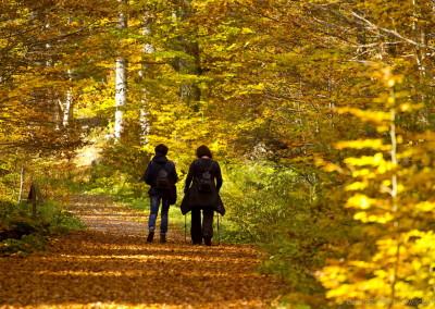 Podzimní Boubín